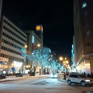 札幌の雪と光