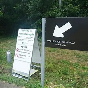 ガンガラ―の谷