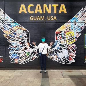グアムアカンタモールの壁の羽